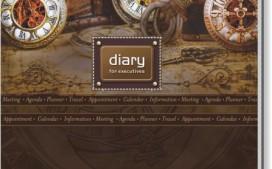 diary 17